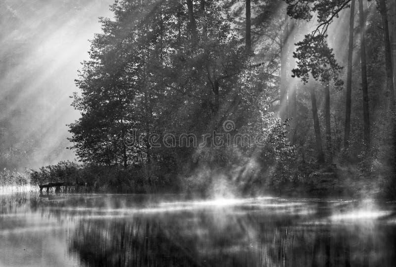 Paysage scénique de lac avec la brume et la lumière du soleil image libre de droits