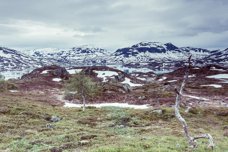 Paysage scénique de montagne de la Norvège photo libre de droits