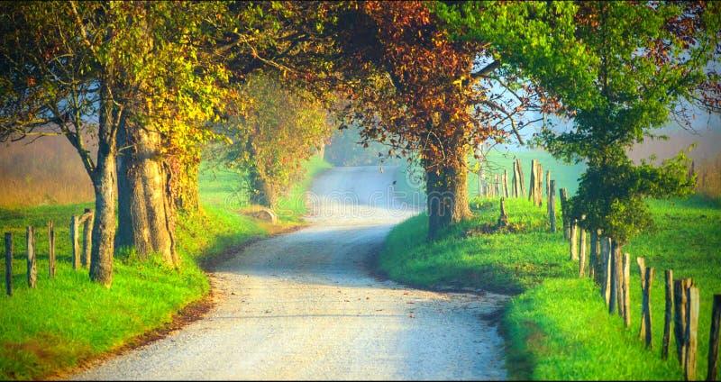Paysage scénique de parc national de Great Smoky Mountains image stock