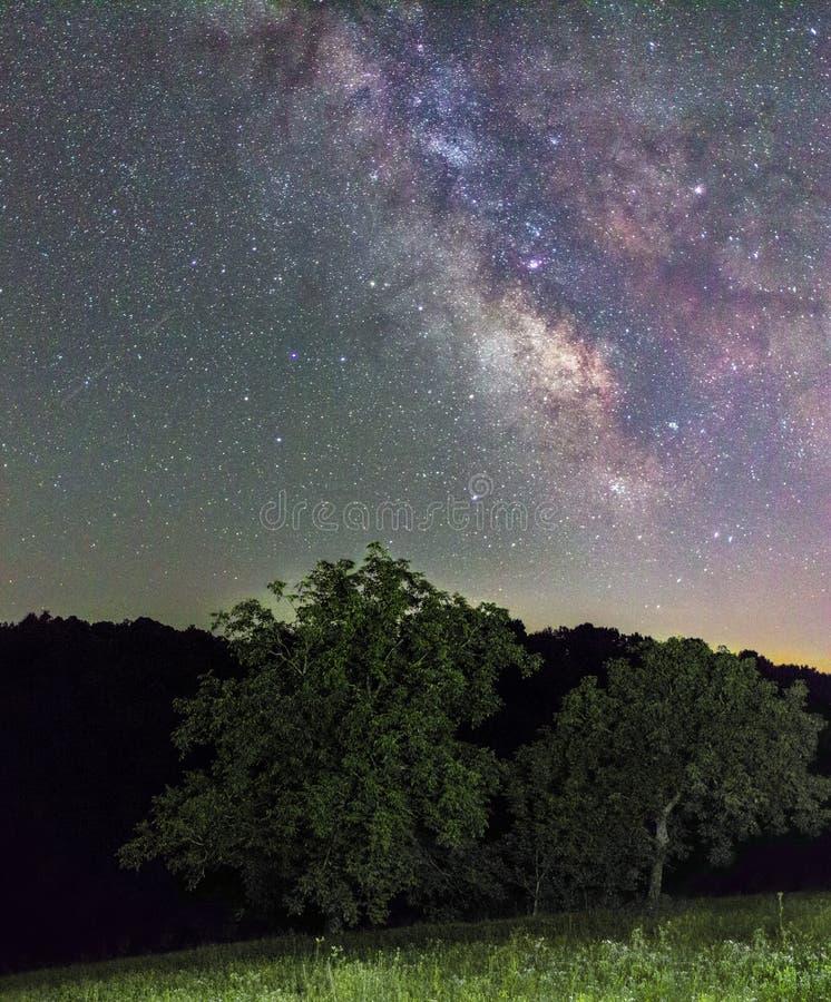 Paysage sous la nuit étoilée et la manière laiteuse image stock