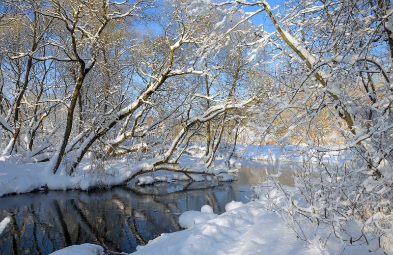 Paysage stupéfiant d'hiver Paysage avec la rivière débordante image stock