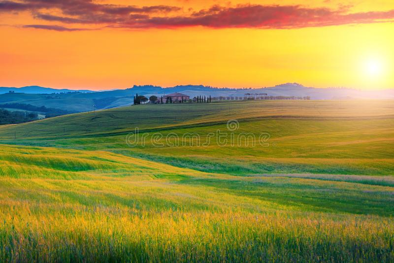 Paysage stupéfiant de la Toscane avec les champs colorés de coucher du soleil et de grain, Italie photos stock