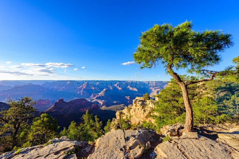 Paysage stup?fiant de paysage au coucher du soleil de la jante du sud du parc national de Grand Canyon, Arizona, Etats-Unis image stock