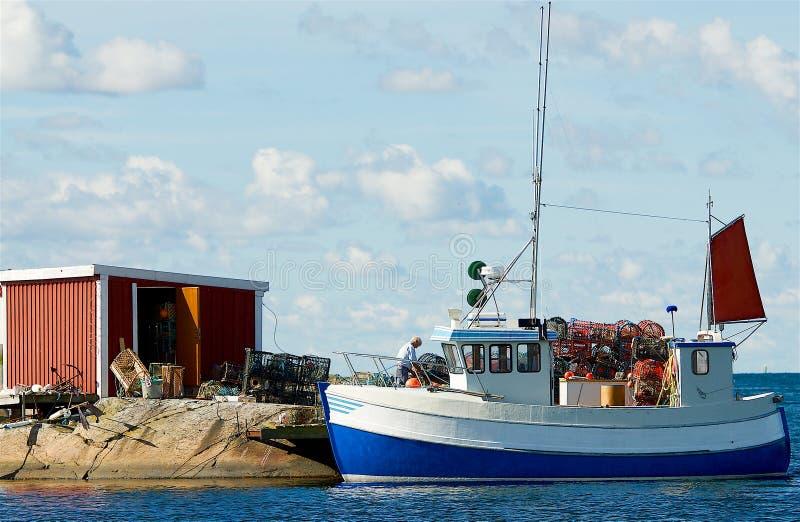 Paysage suédois sur la côte ouest photo stock