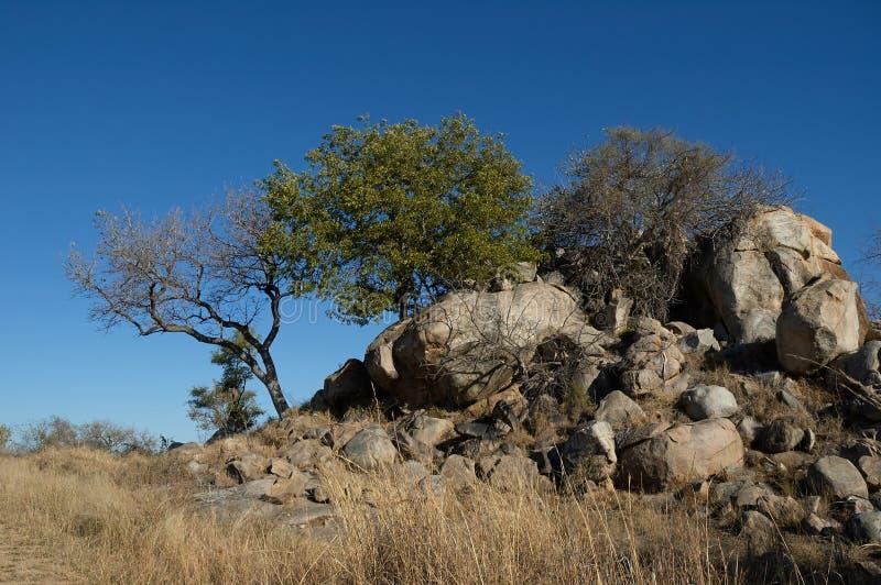 Paysage sud-africain merveilleux image libre de droits