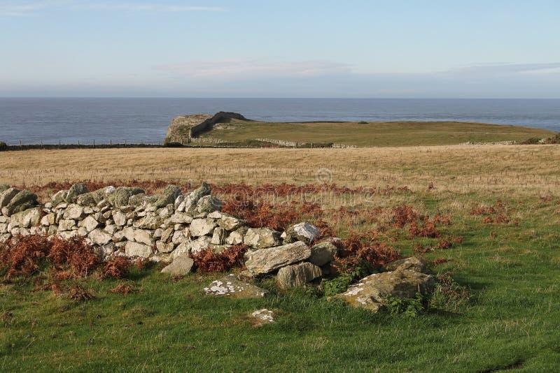 Paysage sur Anglesey images libres de droits