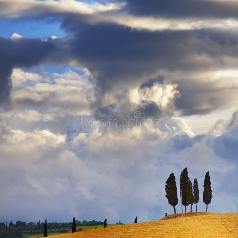 Paysage toscan image libre de droits