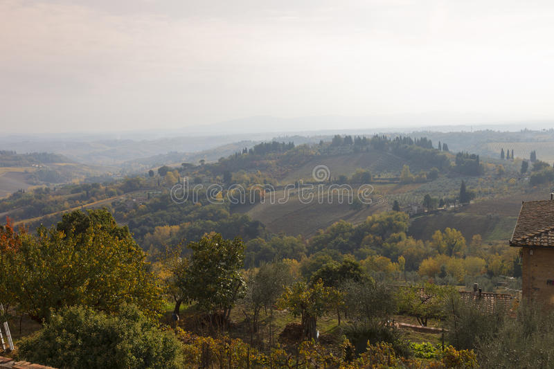 Paysage toscan avec des vignobles images libres de droits