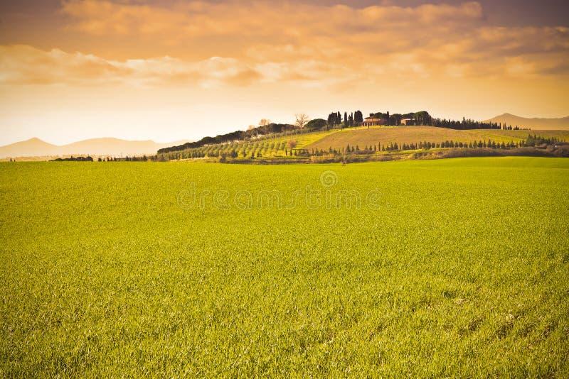 Paysage toscan typique Italie - Pise - image modifiée la tonalité photos libres de droits