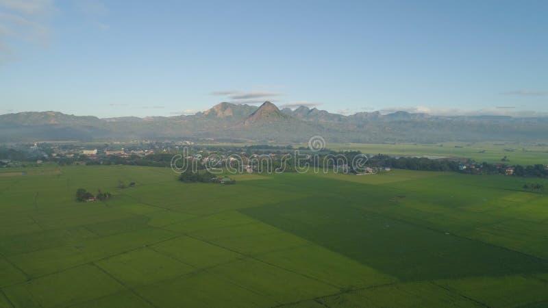 Paysage tropical avec des terres cultivables, montagnes images libres de droits