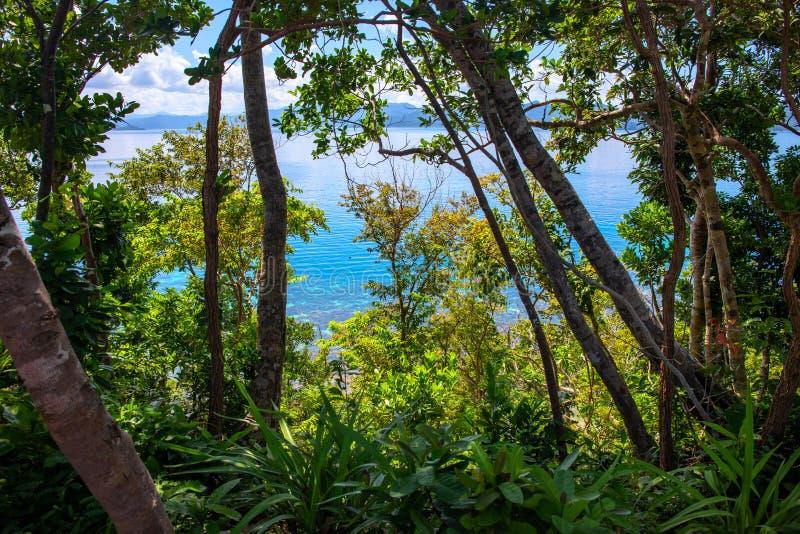 Paysage tropical d'eau de mer de bleu de verdure et de turquoise Nature tropicale d'île Forêt verte de jungle avec le seaview images stock