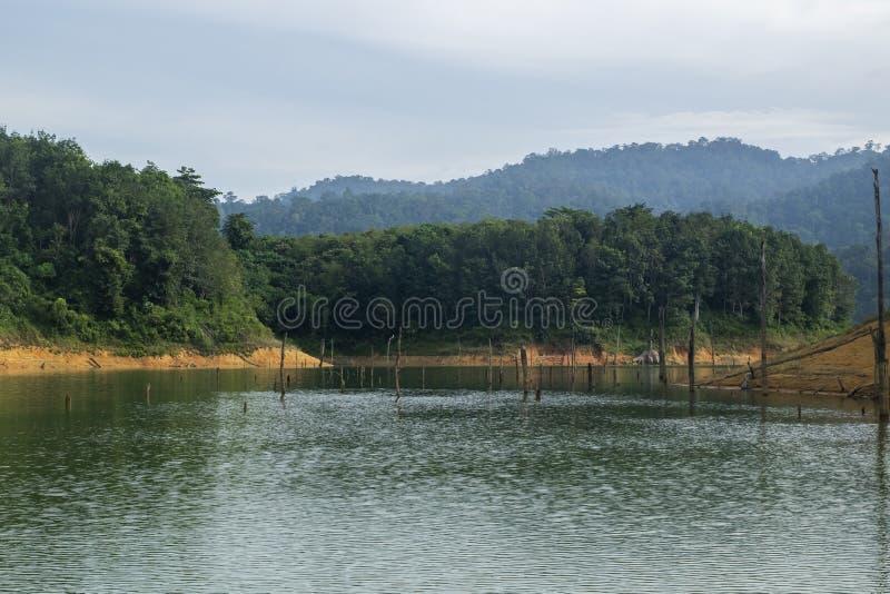 Paysage tropical de forêt tropicale du parc d'état royal de Belum situé dans Perak, Malaisie photographie stock
