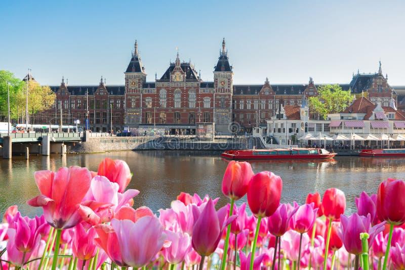 Paysage urbain d'Amsterdam la nuit image libre de droits
