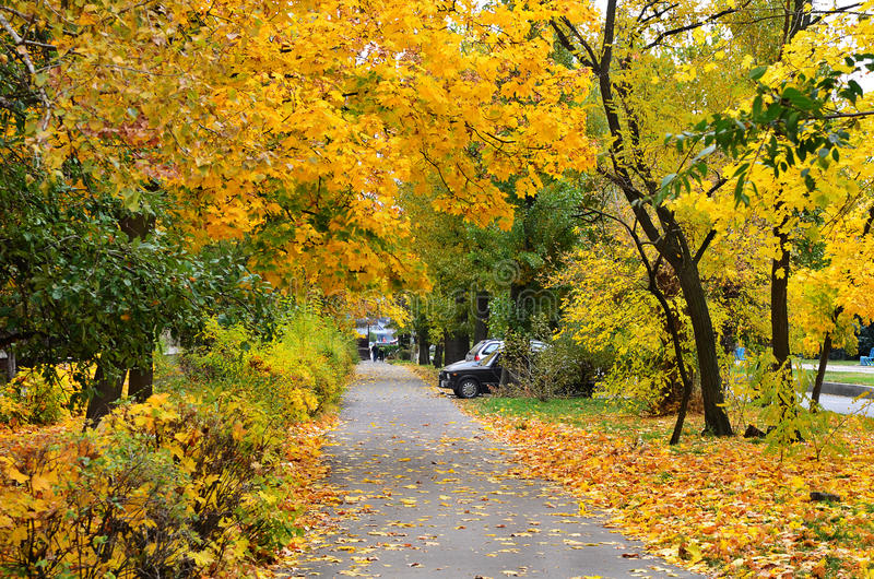 Paysage urbain d'automne photos stock