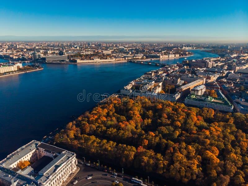 Paysage urbain d'automne, parc avec les arbres d'ombrage d'or, rivière bleue profonde de expédition de Neva, ponts de St Petersbu photographie stock libre de droits