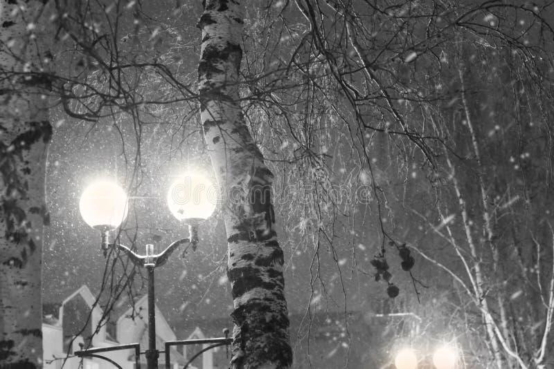 Paysage urbain de nuit en noir et blanc La lumière des lanternes près des arbres pendant les chutes de neige photos stock