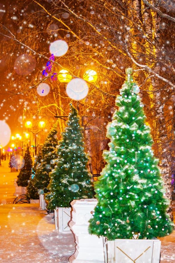 Paysage urbain de nuit, Hall Les arbres de Noël artificiels ornent les rues de ville pendant des chutes de neige image stock