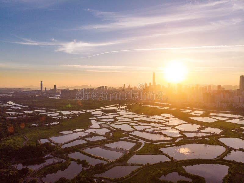 Paysage urbain de Shenzhen, Chine photographie stock