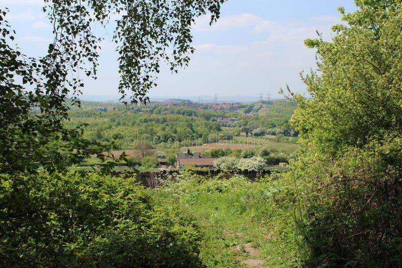 Paysage vers Sheffield par des arbres image stock