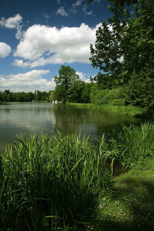 Paysage vert photos stock