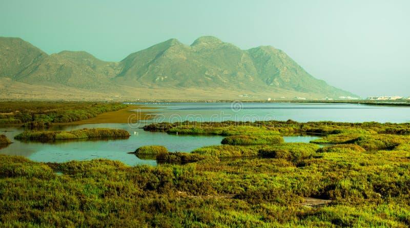 Paysage vert surronded par des lacs photo libre de droits