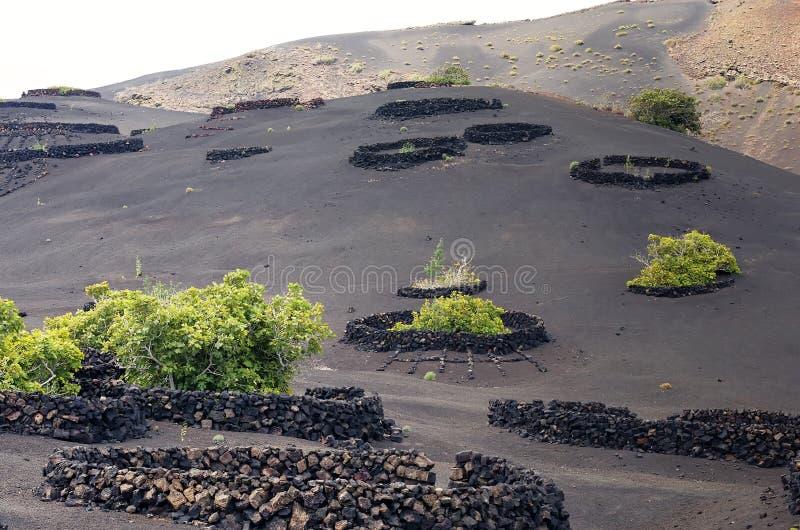 Paysage volcanique à Lanzarote, Îles Canaries, Espagne image stock