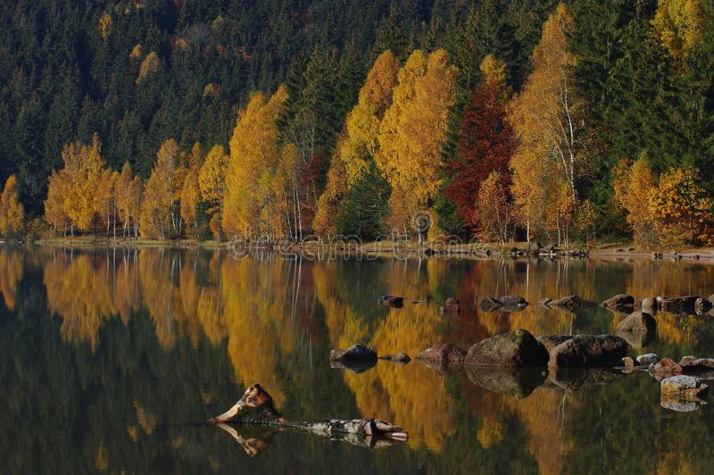 Paysage volcanique d'automne de lac - saint Anne Lake, Roumanie image stock