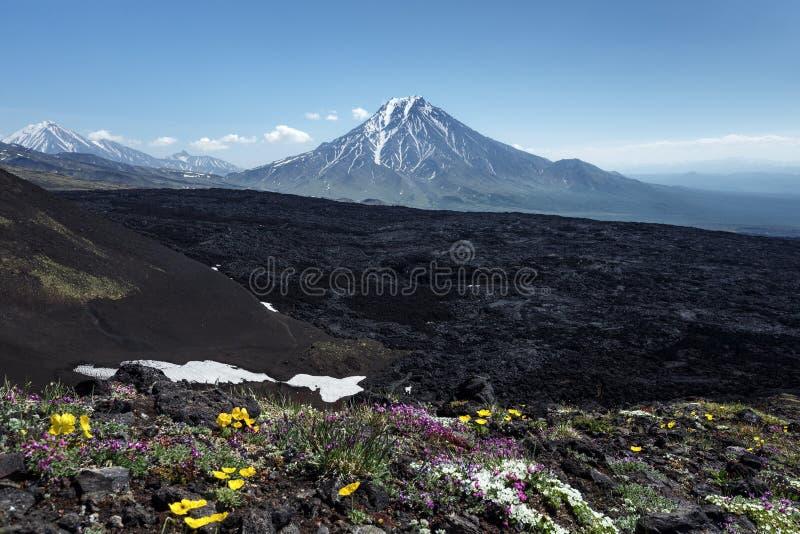 Paysage volcanique de bel été du Kamtchatka photo libre de droits