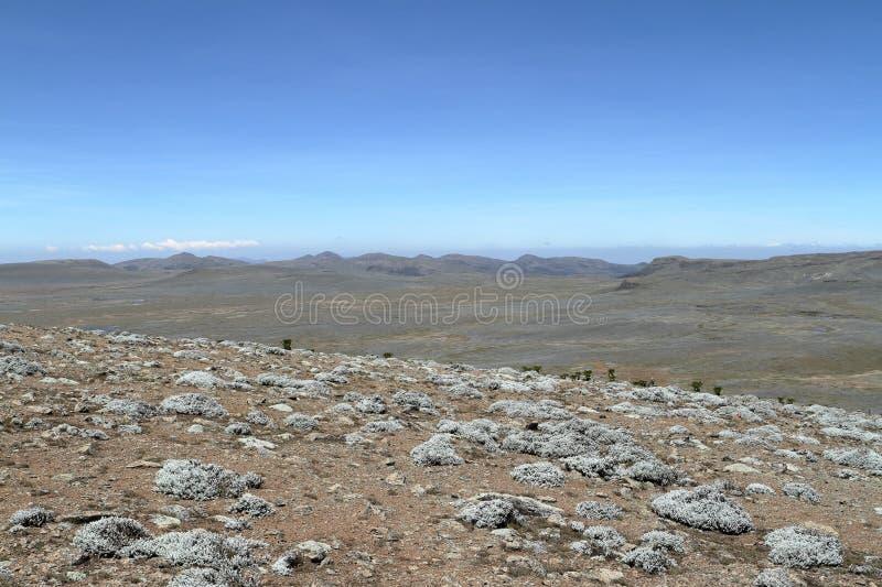 Paysages dans les montagnes de balle de parc national en Ethiopie photographie stock