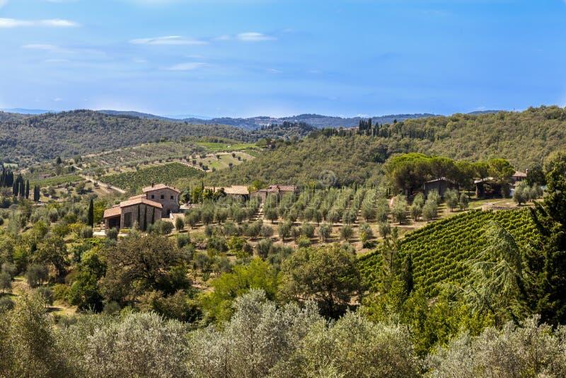 Paysages de la Toscane dans le chianti de Radda images libres de droits