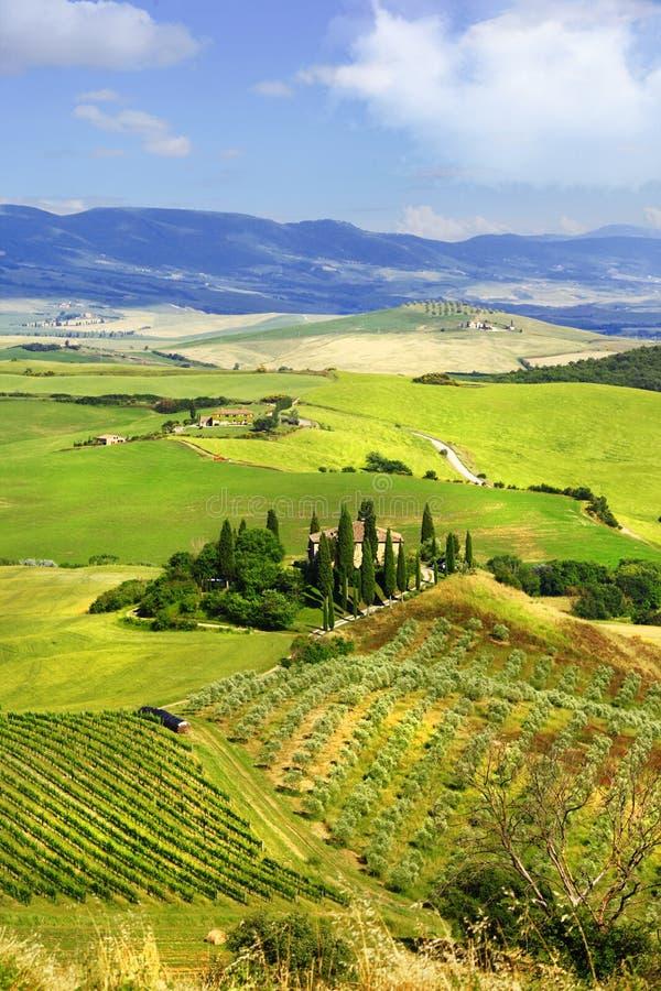 Paysages de la Toscane l'Italie photo libre de droits