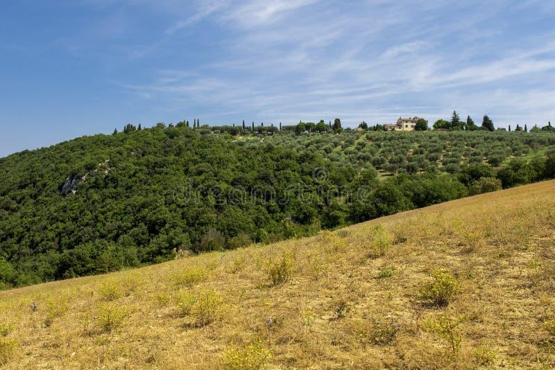 Paysages ruraux de la belle Toscane, Italie photos stock