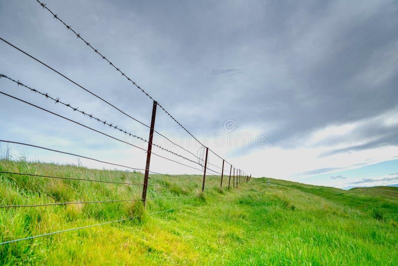 Paysages scéniques de collines de Wither photos libres de droits