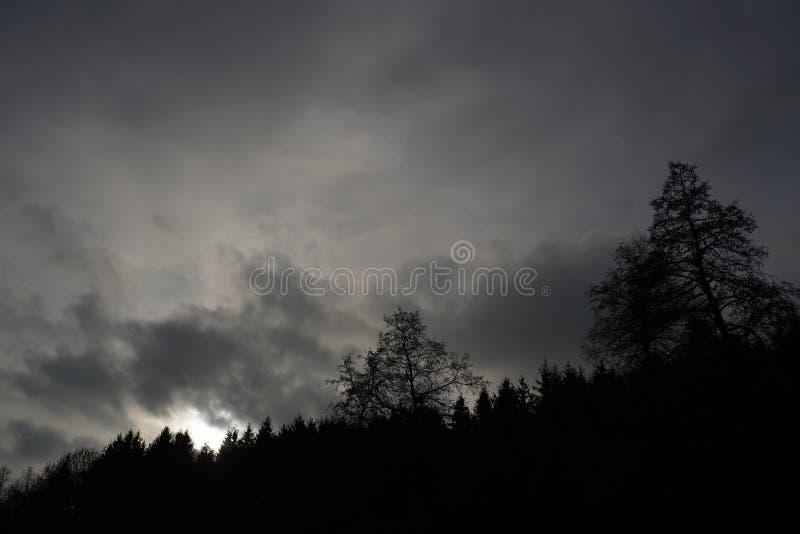 Paysages sombres avec les arbres foncés photographiés un après-midi orageux sombre d'hiver en Allemagne photos libres de droits