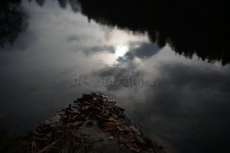 Paysages sombres avec les arbres foncés photographiés un après-midi orageux sombre d'hiver en Allemagne photo stock