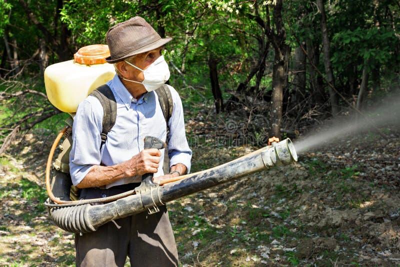 Paysan pulvérisant les arbres avec des produits chimiques image libre de droits