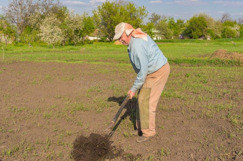 Paysan ukrainien creusant avec la fourche dans le potager image stock