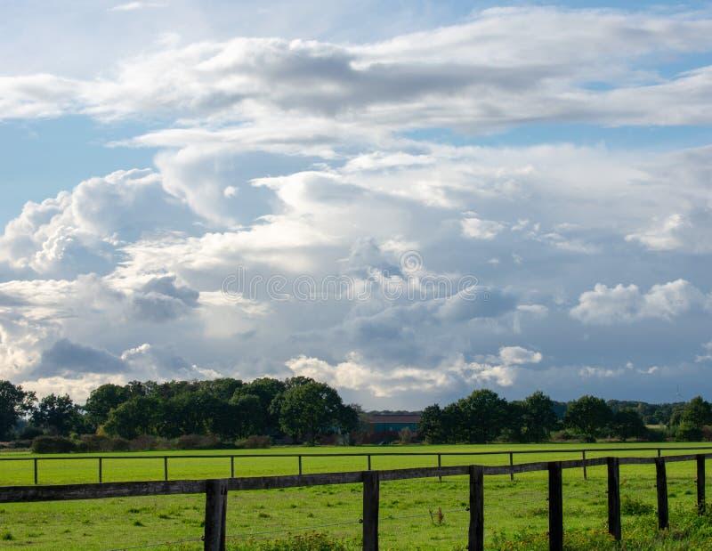 Paysannerie avec les prés luxuriants, les arbres, la barrière et le ciel bleu de nuage à images libres de droits