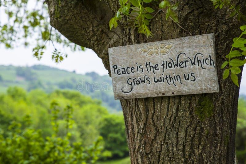 A paz é a flor que cresce dentro de nós fotos de stock