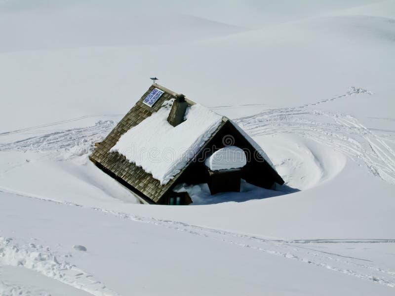 Paz alpina foto de stock
