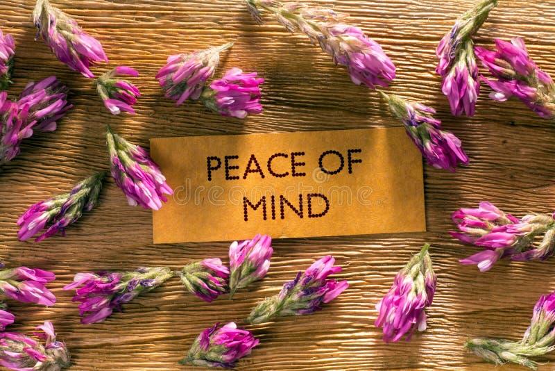 Paz de espírito imagens de stock royalty free
