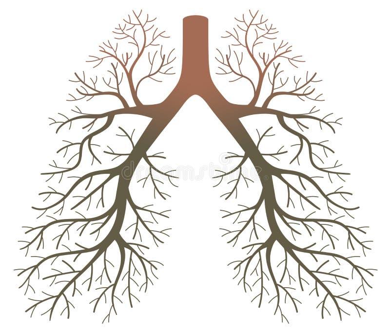 Pazienti del polmone illustrazione di stock