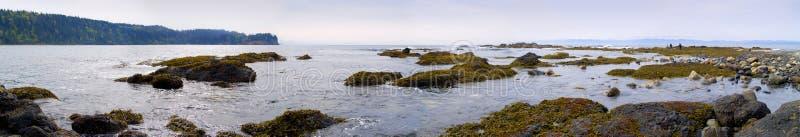 Pazifischer Nordweststrand panoramisch lizenzfreie stockbilder