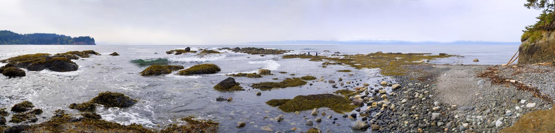 Pazifischer Nordweststrand panoramisch lizenzfreies stockbild