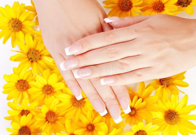 Paznokcie i kwiaty obrazy royalty free