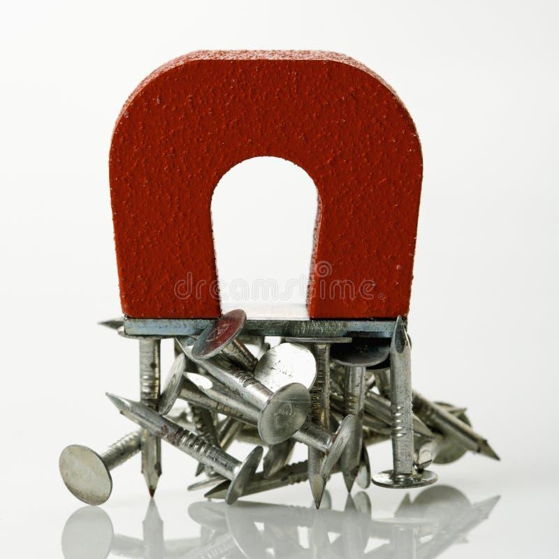 paznokcie magnesów obraz stock