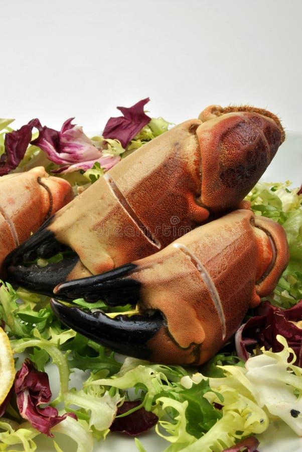 pazury crab świeżej organicznie sałatki fotografia stock