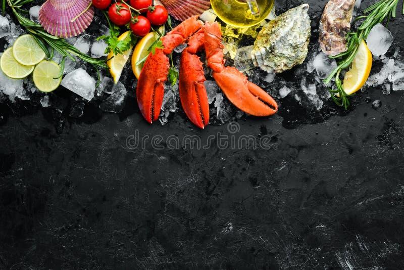 Pazury Owoce morza na czarnym tle fotografia stock