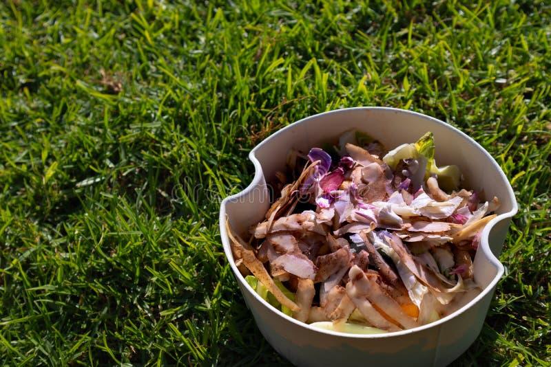 Pbucket bianco di ortaggi e di frutta contro l'erba verde corta fotografia stock libera da diritti