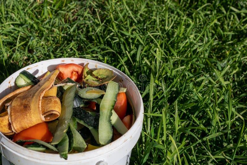 Pbucket bianco di ortaggi e di frutta contro l'erba verde lunga immagini stock libere da diritti